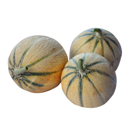 melons-ete